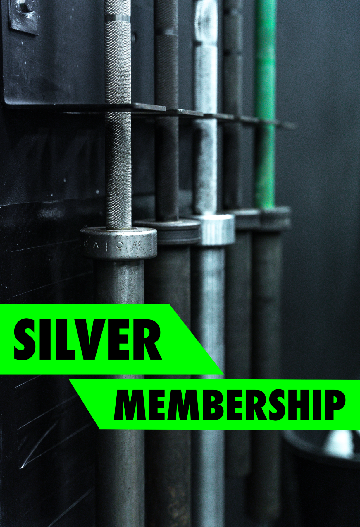 Step in to Silver